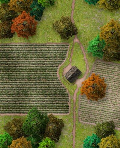 rural level segment